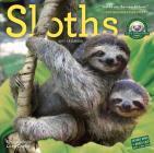 Sloths Wall Calendar 2017 Cover Image