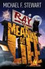 Ray Vs the Meaning of Life Cover Image