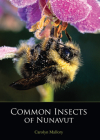 Common Insects of Nunavut Cover Image