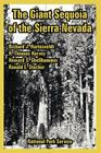 The Giant Sequoia of the Sierra Nevada Cover Image