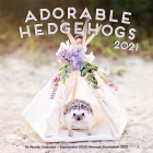 Adorable Hedgehogs 2021: 16-Month Calendar - September 2020 through December 2021 Cover Image