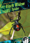Black Widow Spider Cover Image
