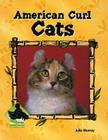 American Curl Cats (Animal Kingdom (Buddy Books)) Cover Image