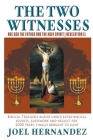 The Two Witnesses are God the Father and The Holy Spirit - Revelation 11: Biblical Treasures Buried Under Extra-Biblical Sources, Guesswork and Neglec Cover Image