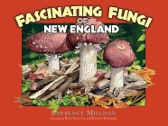 Fascinating Fungi of New England Cover Image