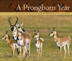 A Pronghorn Year: A Visual Tribute to North America's Pronghorn Cover Image