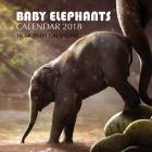 Baby Elephants Calendar 2018: 16 Month Calendar Cover Image