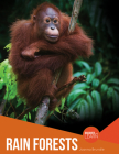 Rain Forests (Discover and Learn) Cover Image
