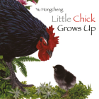 Little Chick Grows Up Cover Image