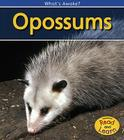 Opossums Cover Image