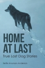 Home at last: True Lost Dog Stories Cover Image