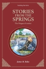 Stories From the Springs: The Niagara Frontier Cover Image
