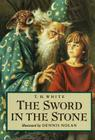 The Sword in the Stone Cover Image