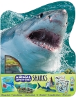 Animal Adventures: Sharks Cover Image