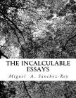 The Incalculable Essays Cover Image