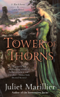 Tower of Thorns (Blackthorn & Grim #2) Cover Image