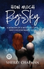 How Much Big Is the Sky: A Memoir of a Mother's Love and Unfathomable Loss Cover Image