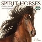 Spirit Horses 2022 Wall Calendar Cover Image