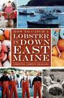 How to Catch a Lobster in Down East Maine (American Palate) Cover Image