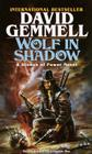 Wolf in Shadow (The Stones of Power: Jon Shannow Trilogy #1) Cover Image