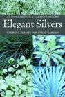 Elegant Silvers: Striking Plants for Every Garden Cover Image