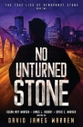 No Unturned Stone: A Time Travel Thriller Cover Image