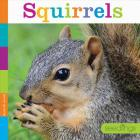 Squirrels (Seedlings: Backyard Animals) Cover Image
