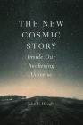 The New Cosmic Story: Inside Our Awakening Universe Cover Image