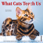 What Cats Teach Us 2022 Mini Wall Calendar Cover Image