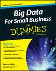 Big Data for Small Business Cover Image