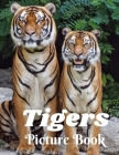 Tigers Picture Book: Picture Book for Alzheimer's Patients and Seniors with Dementia (Gift Book) Giant Cat Predator Animal Safari Feline Gi Cover Image