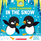 Slide & Surprise in the Snow Cover Image