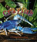 Crayfish (Life Cycle of A...(Paperback)) Cover Image