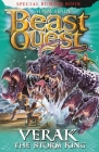 Beast Quest: Verak the Storm King: Special 21 Cover Image