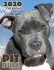 Pit Bull 2020 Calendar Cover Image