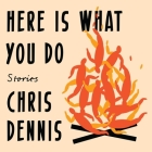 Here Is What You Do: Stories Cover Image