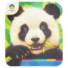 Panda Cover Image