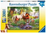 Horses by the Stream 300 PC Puzzle Cover Image