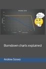 Burndown charts explained Cover Image