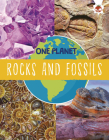 Rocks and Fossils Cover Image