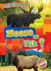 Moose or Elk? Cover Image