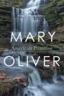 American Primitive Cover Image