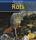 Rats Cover Image