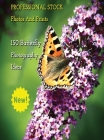 Professional Stock Photos and Prints - 150 Butterfly Photography Ideas - Full Color HD: Butterfly Pictures And Premium High Resolution Images - Premiu Cover Image