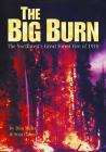 Big Burn Cover Image