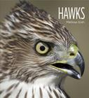 Living Wild: Hawks Cover Image