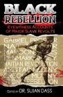 Black Rebellion: Eyewitness Accounts of Major Slave Revolts Cover Image