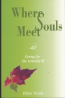 Where Souls Meet: Caring for the seriously ill Cover Image