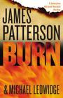 Burn (Michael Bennett #7) Cover Image