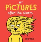 My Pictures After the Storm Cover Image